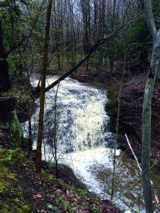 Jackson Falls Waterfall