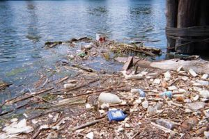 Riverkeeper hosts fundraiser on Sept. 1st for egregiously 'impaired' Scajaquada Creek