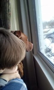 """Nathan Winograd posted this photo of a Buffalo child and his dog, which appeared in Artvoice, on his Facebook page and commented: """"An innocent dog killed by police in front of his family, including this little boy. Deputies raided his home based on the false information of a snitch – """"a criminal who acted as an informant to get out of being arrested."""" No one was arrested, no drugs were found, and the family was left to clean up the bloody mess."""""""